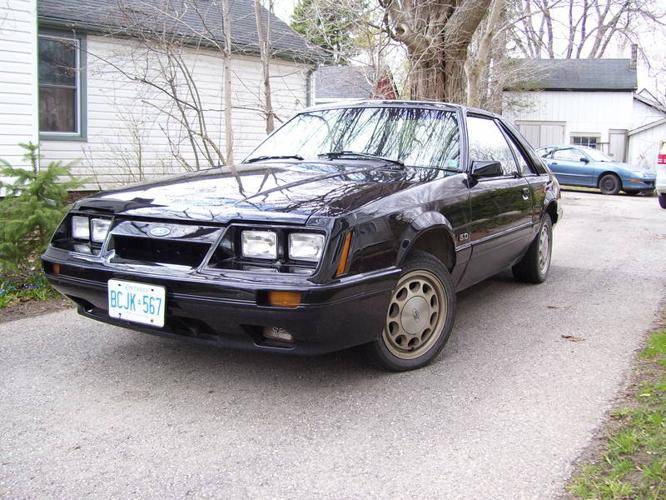 1986 ford mustang gt coupe for sale in woodstock ontario all cars in. Black Bedroom Furniture Sets. Home Design Ideas