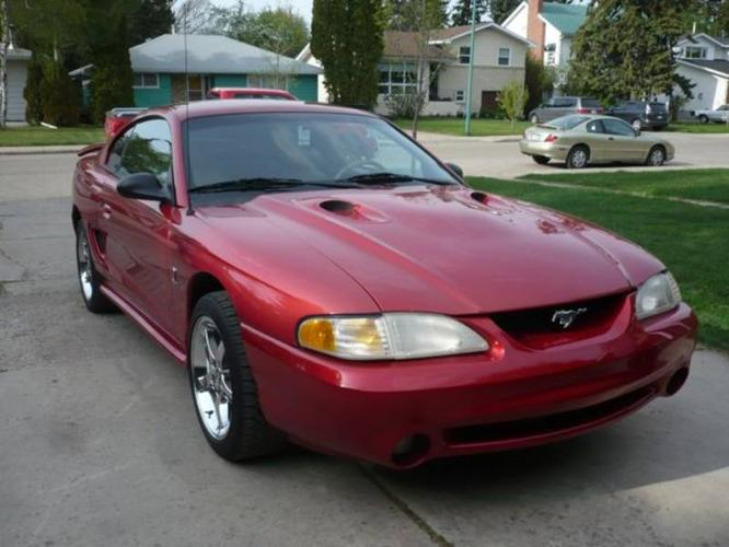 1996 ford mustang cobra svt coupe for sale in saskatoon. Black Bedroom Furniture Sets. Home Design Ideas